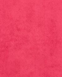 74203 Poppy by