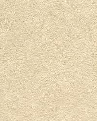 93664 Parchment by