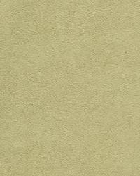 93667 Lichen by