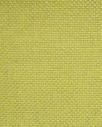 Eclectic Elements Fabric  A1585 Limelight