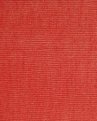 A1632 Amaryllis by