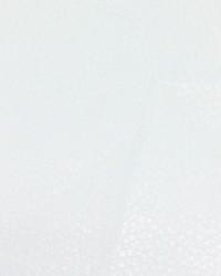 Avanti White by