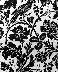 Birds Fabric  Barber Black White