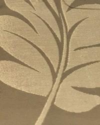 Big Leaf Gold by