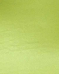 Vinyl Bright Green by