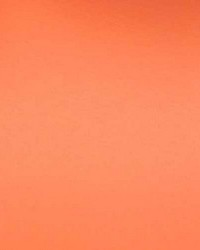 Vinyl Orange by