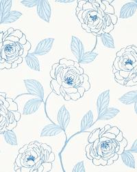 American Beauty Chambray by