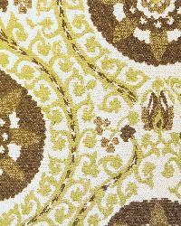 Arabian Nights Willow by