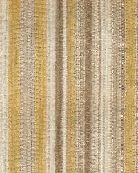 Bancroft Stripe Dandelion by