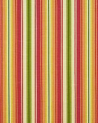 Bluffview Stripe Chili by