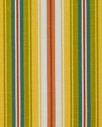 Bluffview Stripe Sunshine by