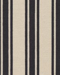 Boardwalk Stripe Onyx by