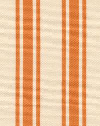 Boardwalk Stripe Persimmon by