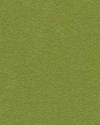 Kasmir Bungalow Velvet Apple Fabric