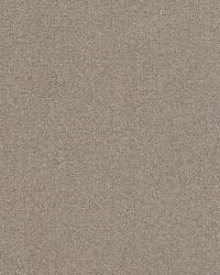 Kasmir Bungalow Velvet Pewter Fabric