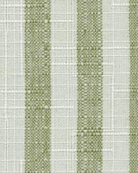 Cape Cod Stripe Olive by