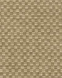 Checkered Out IO Sisal by