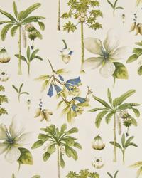 Coconut Grove Lemongrass by