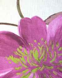 Floradora Damson by