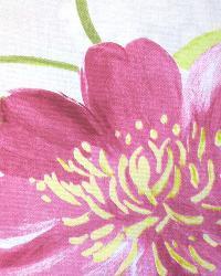 Floradora Fuchsia by