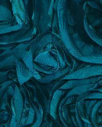 Floribunda Rose Turquoise by