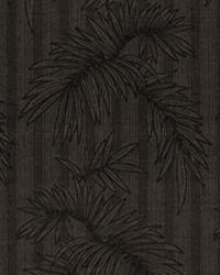 Gentle Palm IO Graphite by