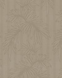Gentle Palm IO Spice by