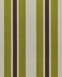 Glamour Stripe Lime by