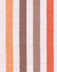 Hidcote Stripe Saffron by