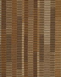 Intrepid Stripe Coffee by