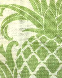 Iolani Garden Palm by