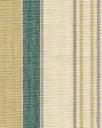 Oakley Stripe Teal by