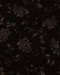 Oriental Vine IO Carbon by