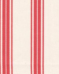 Tipler Stripe Peony by