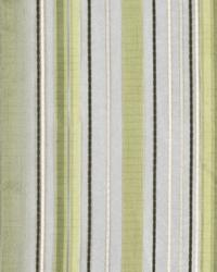 Tipton Stripe Fern by