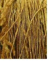 Kast Trim Kast Trim BT1001 Gold