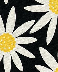 Daisy Noir by
