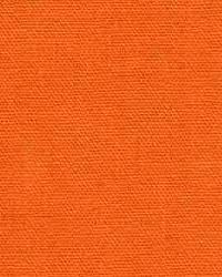 Sunbeam Chintz Orange by