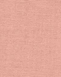 Sunbeam Chintz Pink by