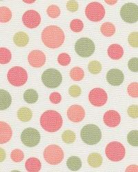 Dotty Dot Watermelon by