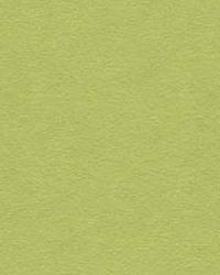 Ultrasuede Green 30787 30787 333 by