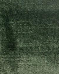 Versailles Eucalyptus Velvet by