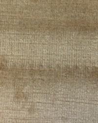 Versailles Tawny Velvet by