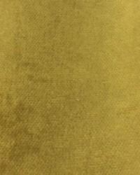 Como Mustard by