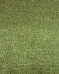 Marvel PB Lichen Velvet by