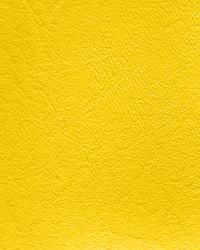 Windstar 105 Sunshine Yellow by