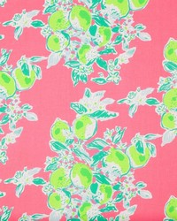 Pink Fruit Fabric  Pink Lemonade Hotty Pink