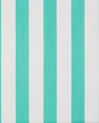 Surf Stripe Shorely Blue by