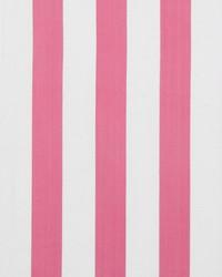 Surf Stripe Flamingo by