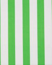 Surf Stripe Palm Green by